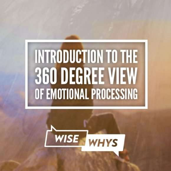 Introduction to the 360 Degree View of Emotional Processing