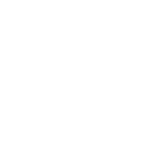Alexander's The JUST Philosophy